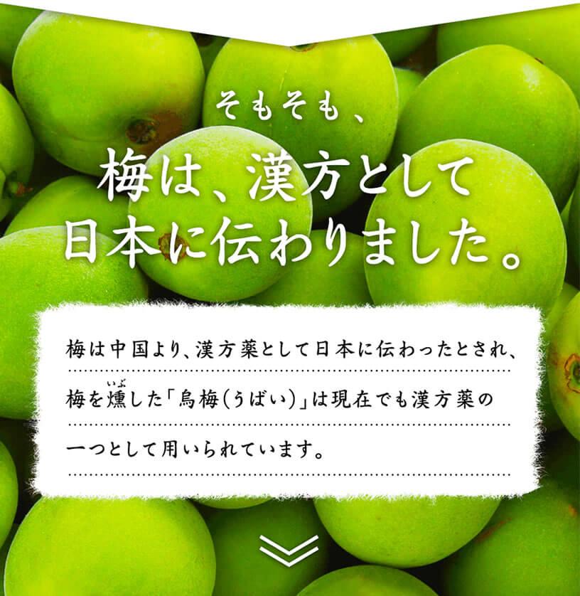 そもそも、梅は、漢方として日本に伝わりました。梅は中国より、漢方薬として日本に伝わったとされ、梅を燻(いぶ)した「鳥梅(うばい)」は現在でも漢方薬の一つとして用いられています