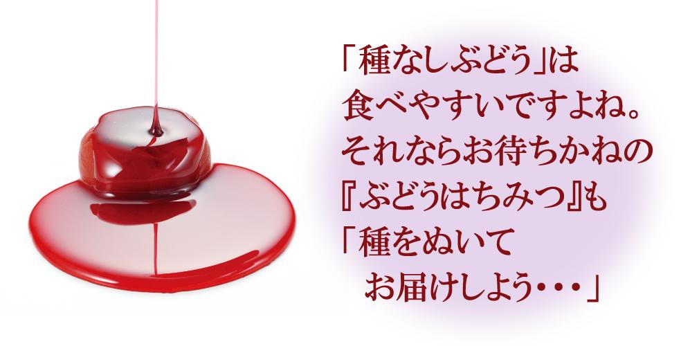 秋限定♪送料無料!ぶどうはちみつ梅