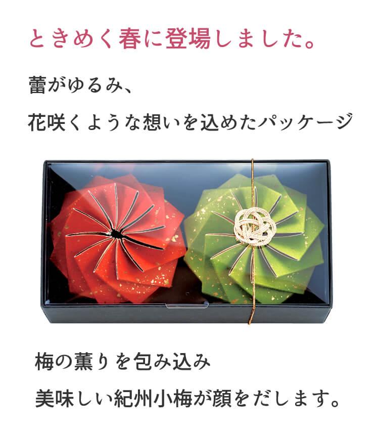 花咲く小梅
