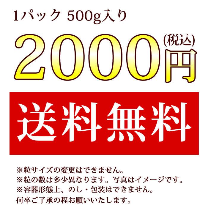 【特別企画】超大粒 スイートはちみつ500g