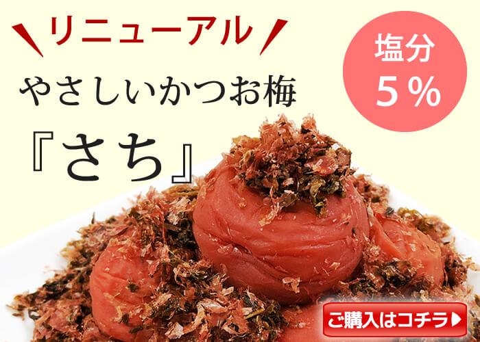 【季節限定】種ぬき苺はちみつ梅380g