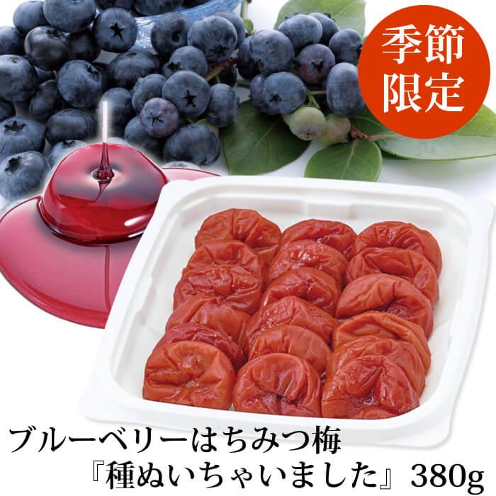 種ぬきブルーベリー380g