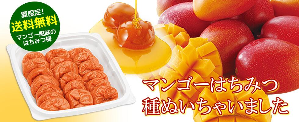 【送料無料】種ぬきマンゴーはちみつ