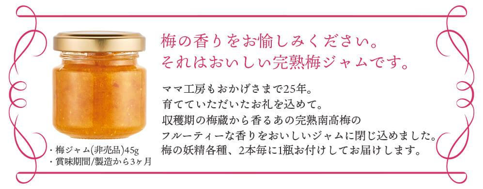 『梅の妖精』ママ工房