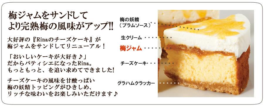 美味しさの秘密はプラムソース!!