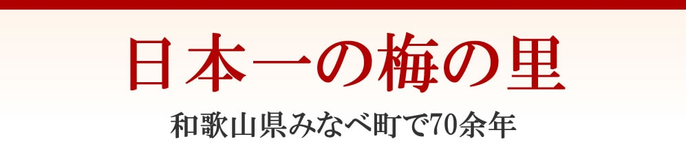 日本一の梅の里 和歌山県南部町で70余年